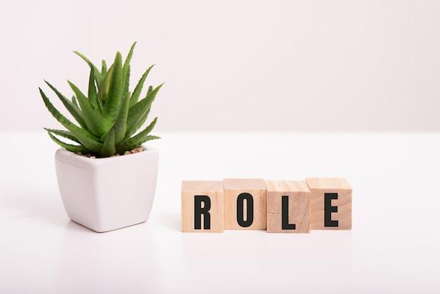 Mot de rôle écrit dans un cube en bois sur blanc.