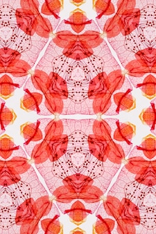 Motif abstrait de fond rouge transparente avec des fleurs décoratives et des feuilles sur fond blanc.