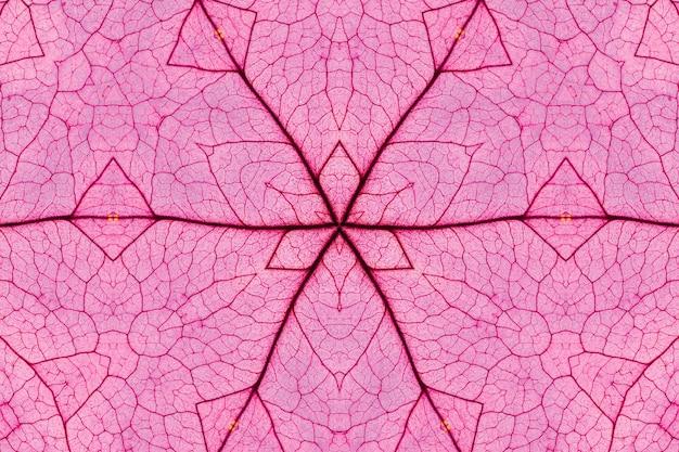 Motif abstrait fond rouge transparente avec des fleurs et des feuilles décoratives