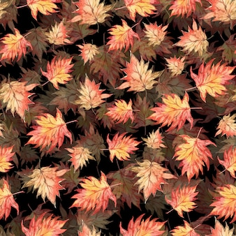Motif aquarelle transparente de feuilles d'érable automne