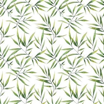 Motif aquarelle transparente avec de grandes branches et des feuilles de bambou sur fond blanc