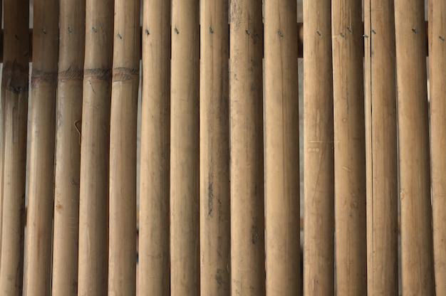 Motif de bambou brun sec.