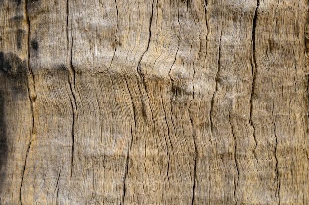 Motif en bois décoré