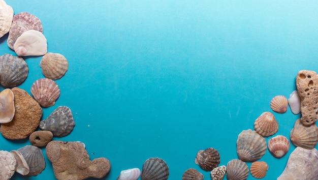 Motif coquillage créatif sur fond bleu pastel. mise à plat d'été.