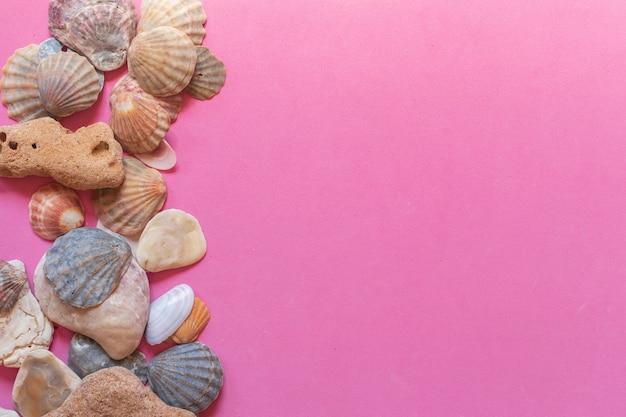 Motif coquillage créatif sur fond rose pastel dégradé. mise à plat d'été.