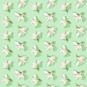Motif créatif régulier sans couture avec bourgeon d'alstroemeria fleur blanche sèche sur fond fleuri naturel vert