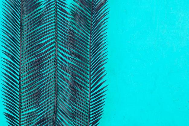 Motif de deux feuilles de palmier sur fond bleu sarcelle
