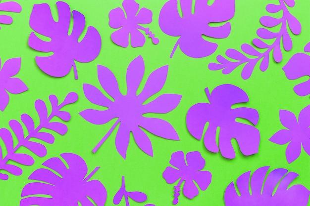 Motif de feuilles tropicales