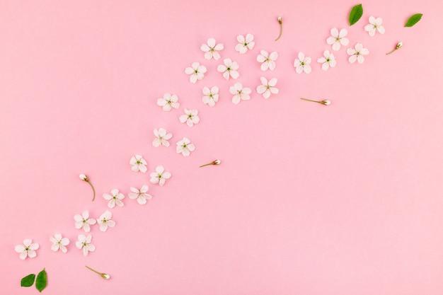 Motif de fleurs en fleurs de cerisier de printemps blanc