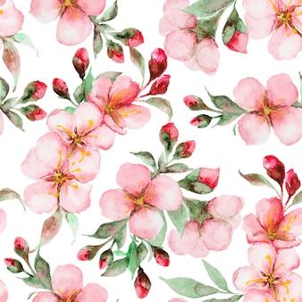 Motif de fleurs de sakura à l'aquarelle