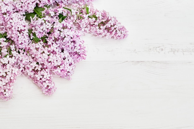 Motif floral de branches de lilas roses, fond de fleurs. lay plat, vue de dessus.