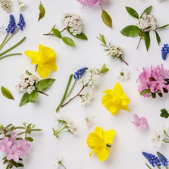 Motif floral avec des fleurs et des feuilles de printemps sur fond blanc