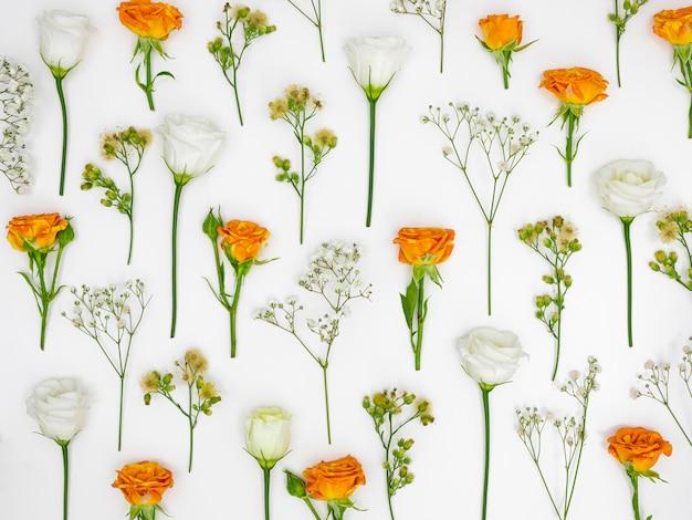 Motif de fond de fleurs
