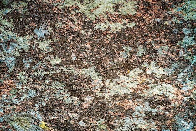Un motif inhabituel de moisissure multicolore sur un mur de pierre grise avec un fond de texture de mousse
