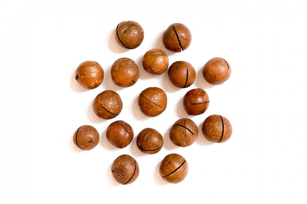 Motif de noix - noix de macadamia en coque sur un blanc en forme de cercle.