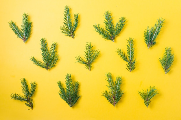 Motif de petites branches d'épinette sur fond jaune