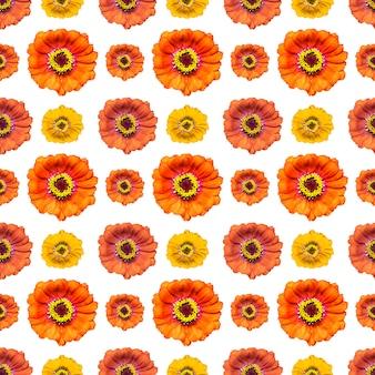 Motif sans fin sans couture avec des fleurs de zinnia multicolores. fond floral. pour la conception et l'impression. fond de zinnium naturel. concept pour l'impression et la conception.