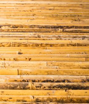 Motif de texture de bambou backgroung