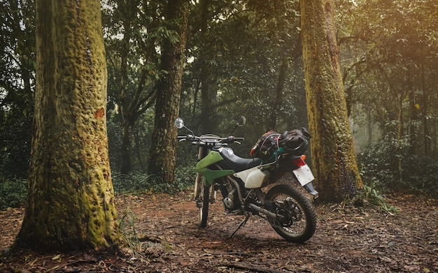 Moto de tourisme dans la forêt avec un faible éclairage.