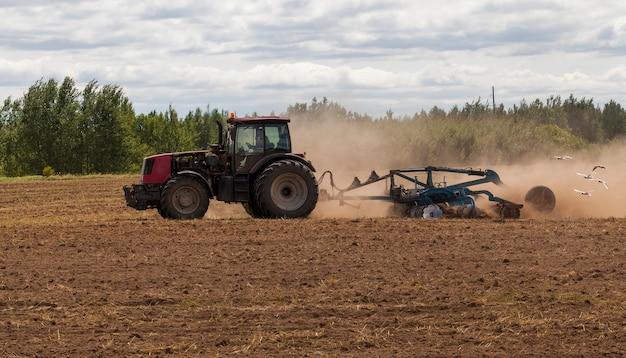 Mouettes blanches assis sur la terre labourée et volant derrière la charrue avec le tracteur pendant le labour du sol sur le terrain