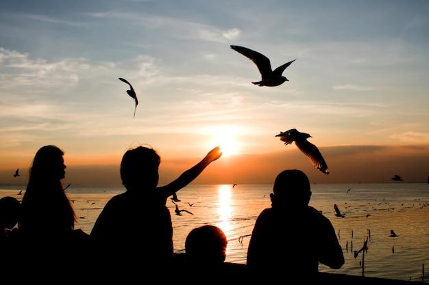 Mouettes volant dans la mer au coucher du soleil