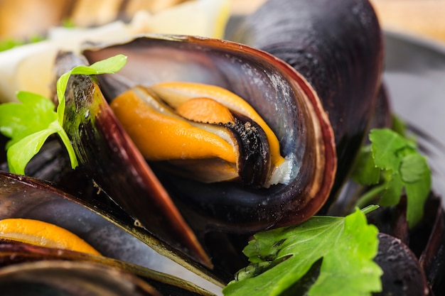 Moules au vin avec persil et citron. fruits de mer.