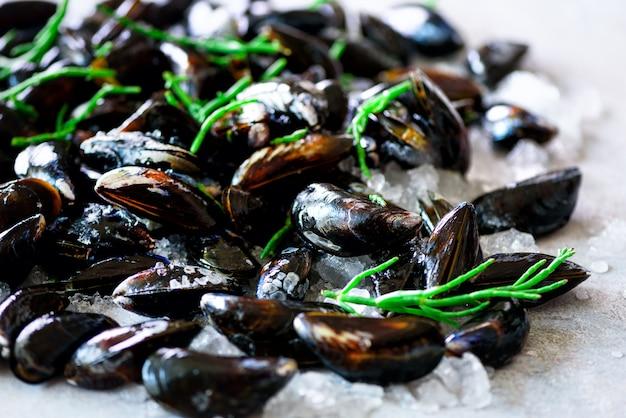 Moules bouillies aux algues, plantes marines sur béton de pierre.