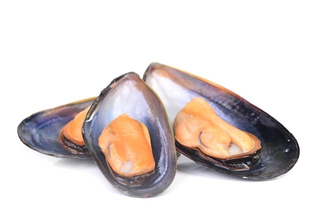 Moules fraîches