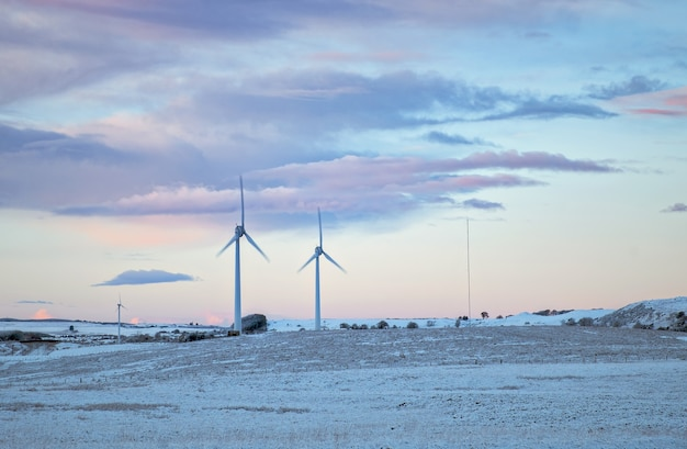 Moulins à vent dans un champ en hiver. west lothian, ecosse, royaume-uni