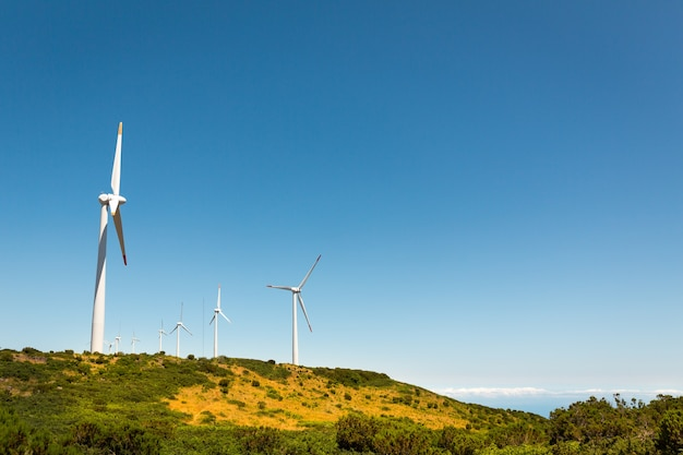 Moulins à vent dans la vallée