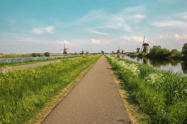 Moulins à vent hollandais traditionnels avec de l'herbe verte au premier plan