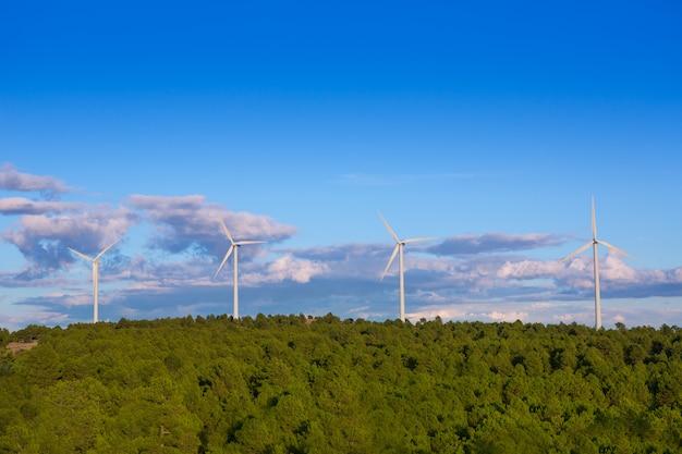 Moulins à vent vert énergie électrique dans la montagne de pin bleu ciel