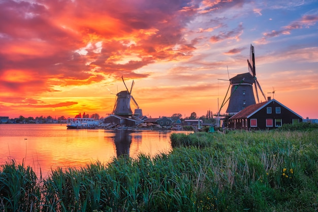 Moulins à vent à zaanse schans en hollande au coucher du soleil zaandam nether