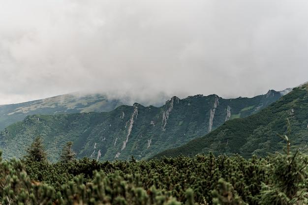 Mountain hoverla avec brouillard et pluie
