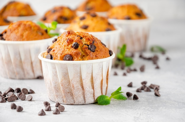 Muffins aux pépites de chocolat sur fond de béton gris. espace de copie.