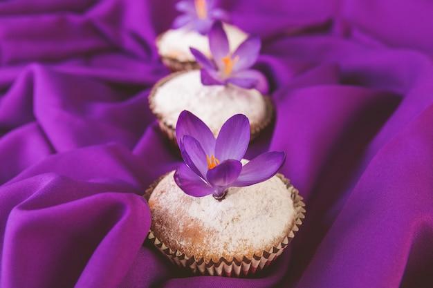 Muffins décorés avec fleur de crocus sur violet .spring. fermer.