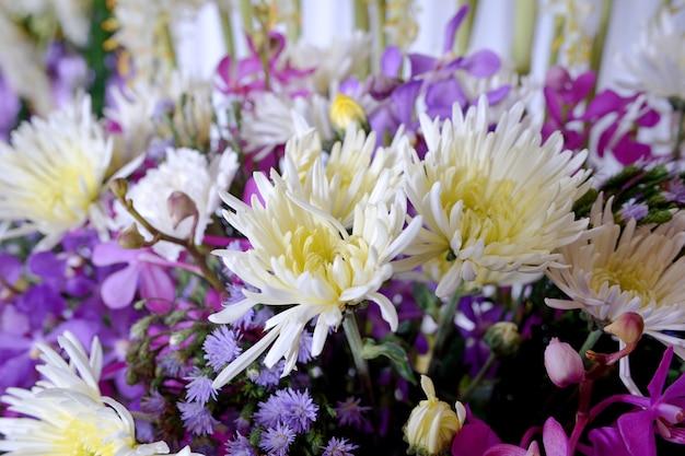 Multi fleur sur mur
