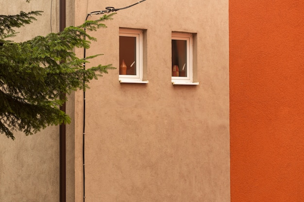 Mur de bâtiment avec fenêtres et arbre