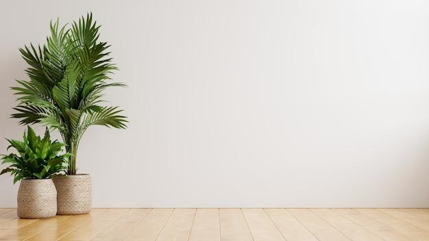Mur blanc salle vide avec des plantes sur un sol, rendu 3d