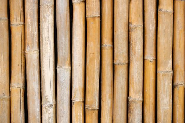Mur de branche de bambou sec pour le fond de texture