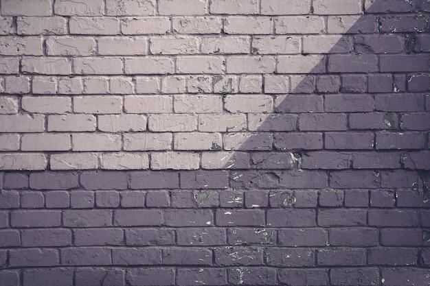 Mur de brique violet