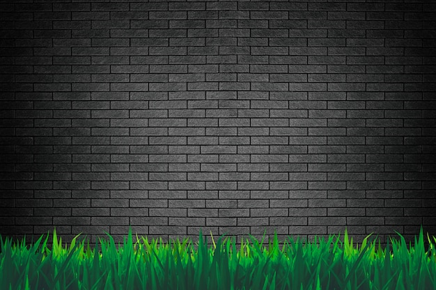 Mur de briques et fond d'herbe ou de papier peint
