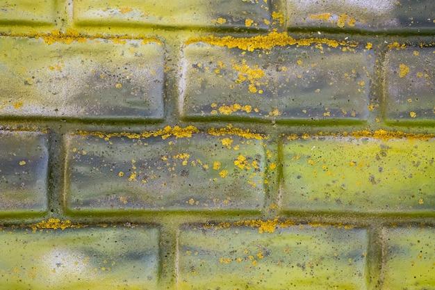 Mur de briques peintes en jaune et vert