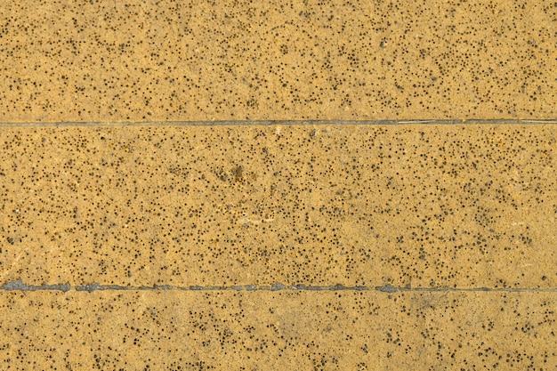 Mur de ciment brun texture grunge. espace de copie