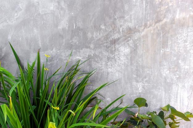 Mur extérieur moderne avec blocs de béton et jardin vertical