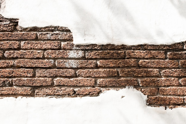 Mur de fond blanc