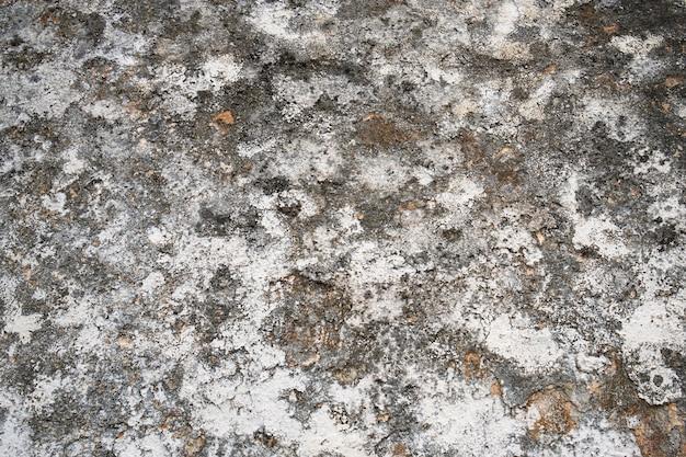 Mur de grange avec moule