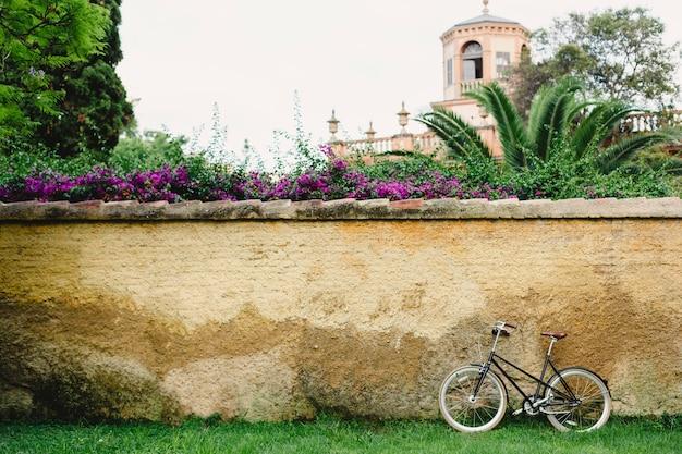 Mur ou mur de béton à l'extérieur avec des plantes autour et vieux vélo