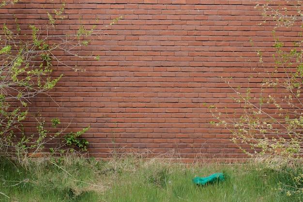 Mur de la nature