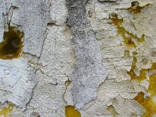 Mur de pierre déchirée